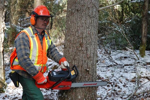 Types Of Logging In Ontario