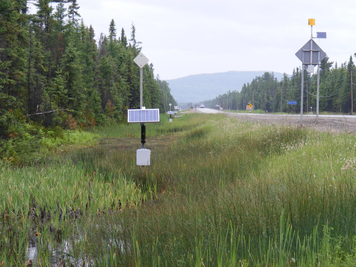 Wildlife detection system on Highway 17 near Sault Ste. Marie