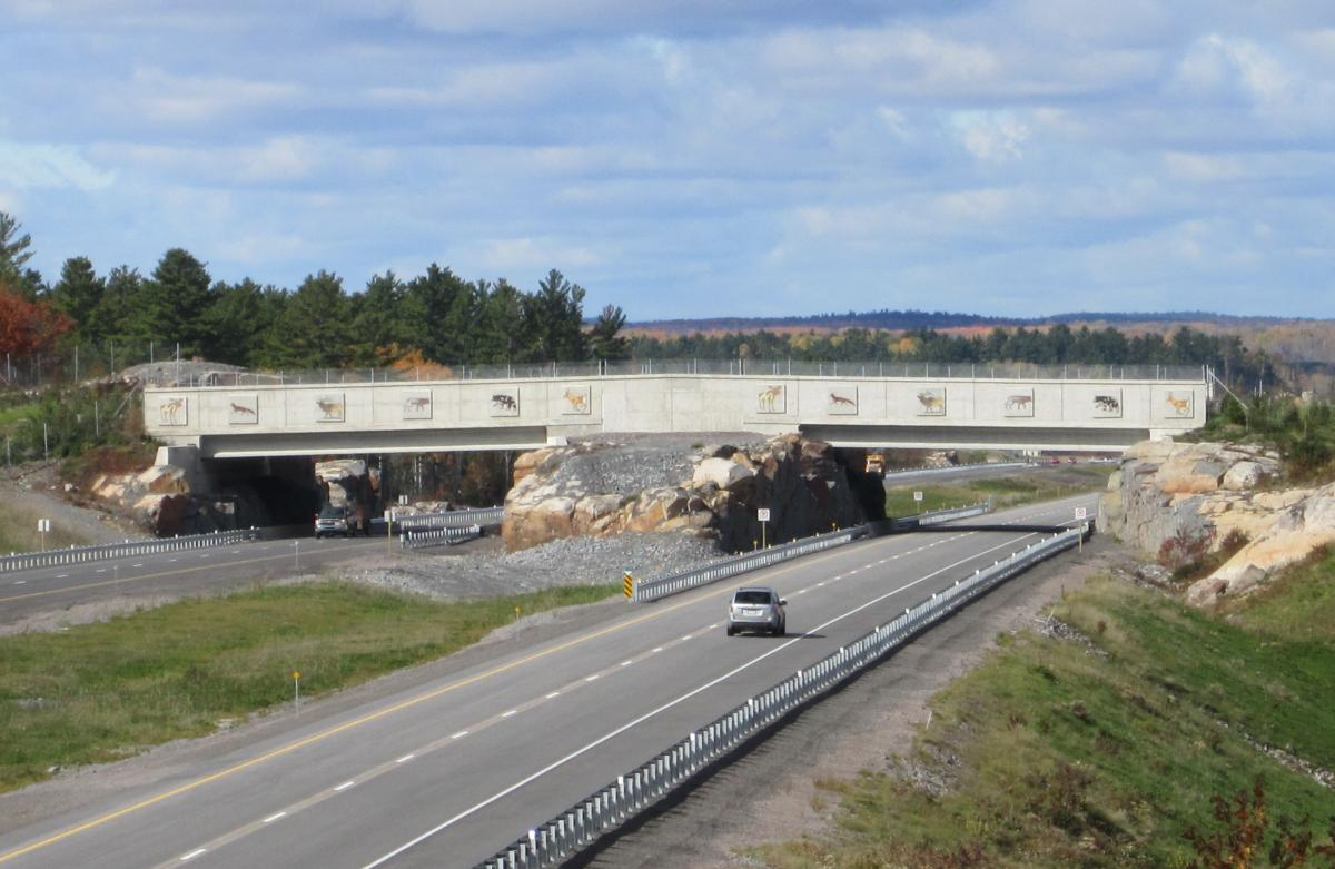 Wildlife bridge crossing near Sudbury Highway 69
