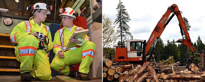 Mandatory skills training for the mining and forestry industries