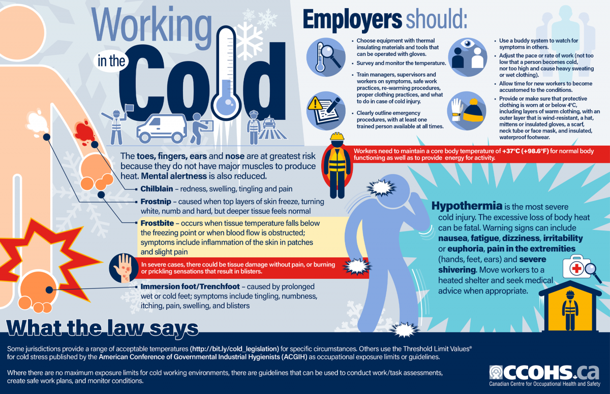 Workplace safety infographic regarding working in the cold